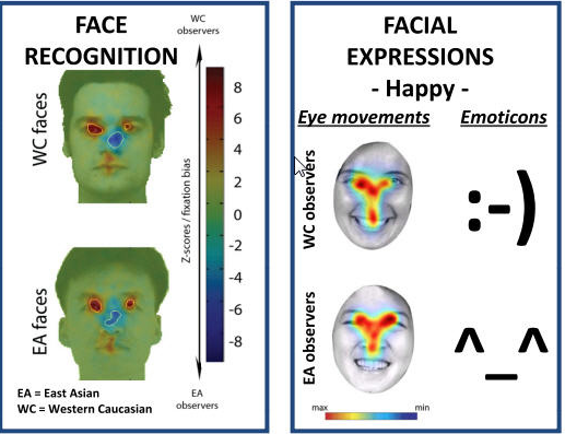 facial recognition, facial expression, biometrics, microexpressions